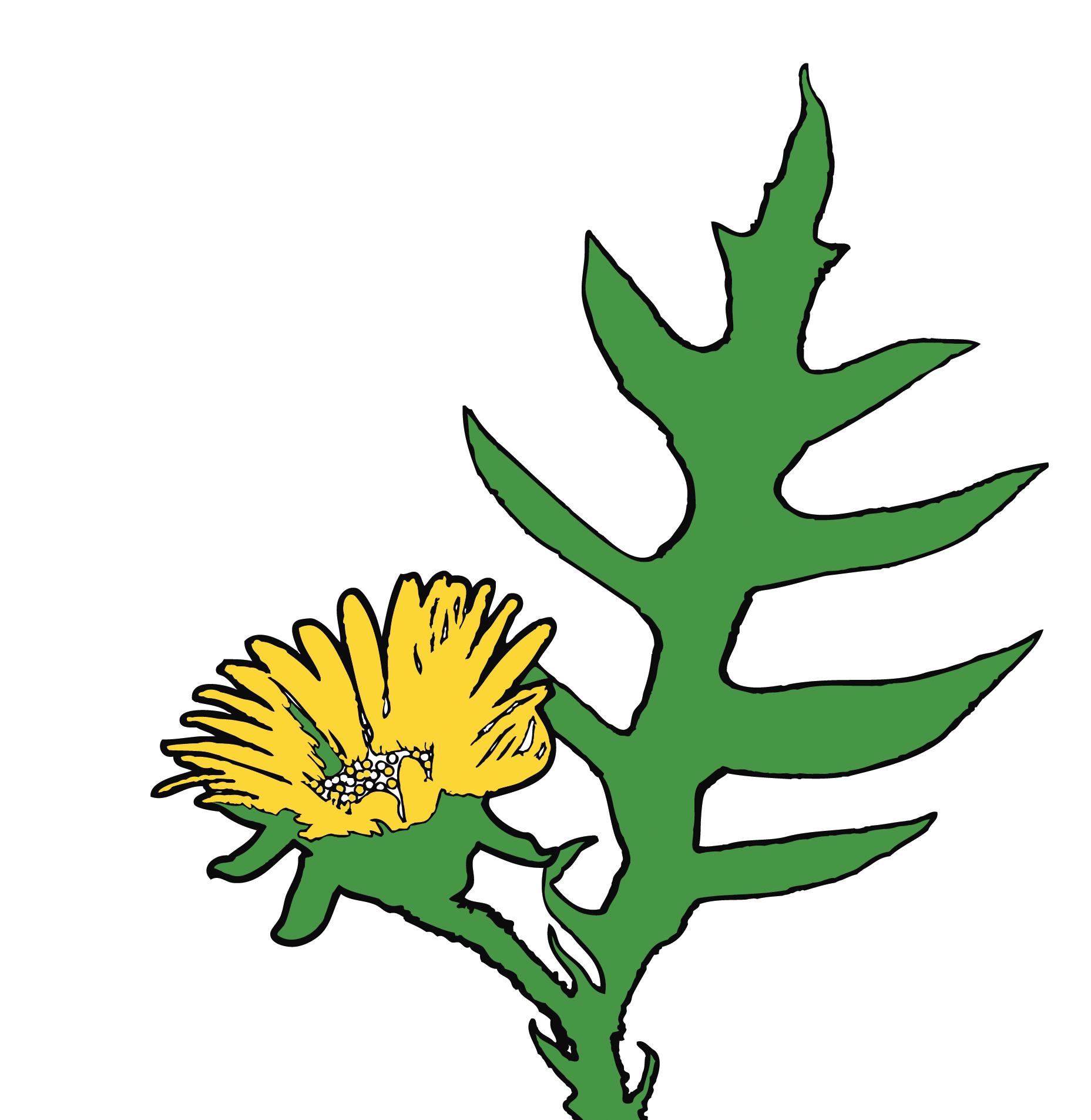 Compass Flower Press